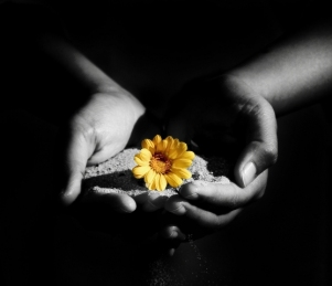 lule jete
