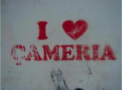 I love Çamëria